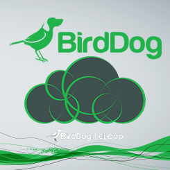 BirdDog Cloud NDI Remote Delivery and Management Software