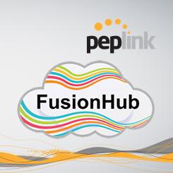 Peplink FusionHub Virtual SpeedFusion Appliance